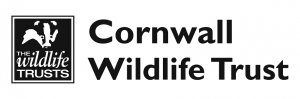 A focus on the State of Nature in Cornwall