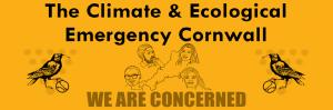 Council Climate Crisis Protest : 28 Sep, Truro
