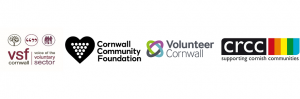 Cornwall VCSE Infrastructure Alliance - Ideas/Recommendations Requested by 27 Nov